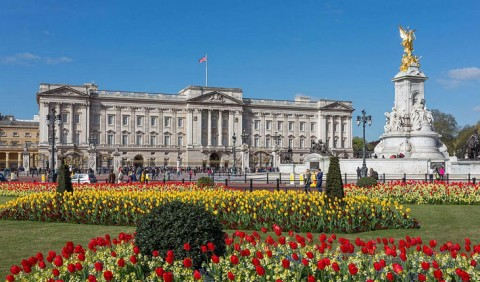 ELATT students visit Buckingham Palace
